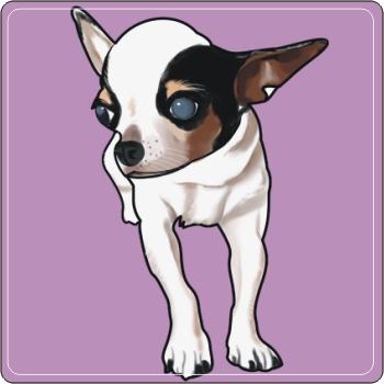 宠物q版画 吉娃娃q版画 pnp-001 将心爱宠物画成可爱的宠物q版,可以